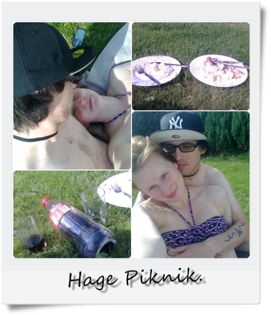 piknik i hagen